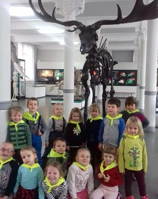 Wizyta  Muzeum Przyrodniczym